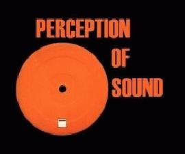 Perception of sound project