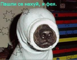 ArtOfWar Щербаков Сергей Анатольевич Щенки и псы войны